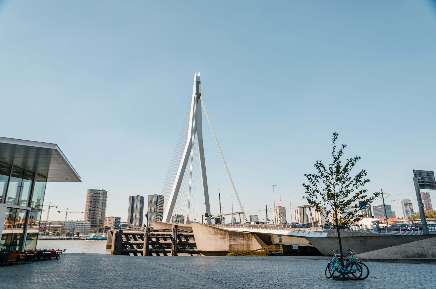 10x De leukste Rotterdamse souvenirs om te geven